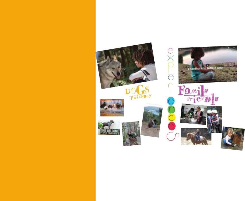 Family & Dog Friendly Experiences Thumbnail