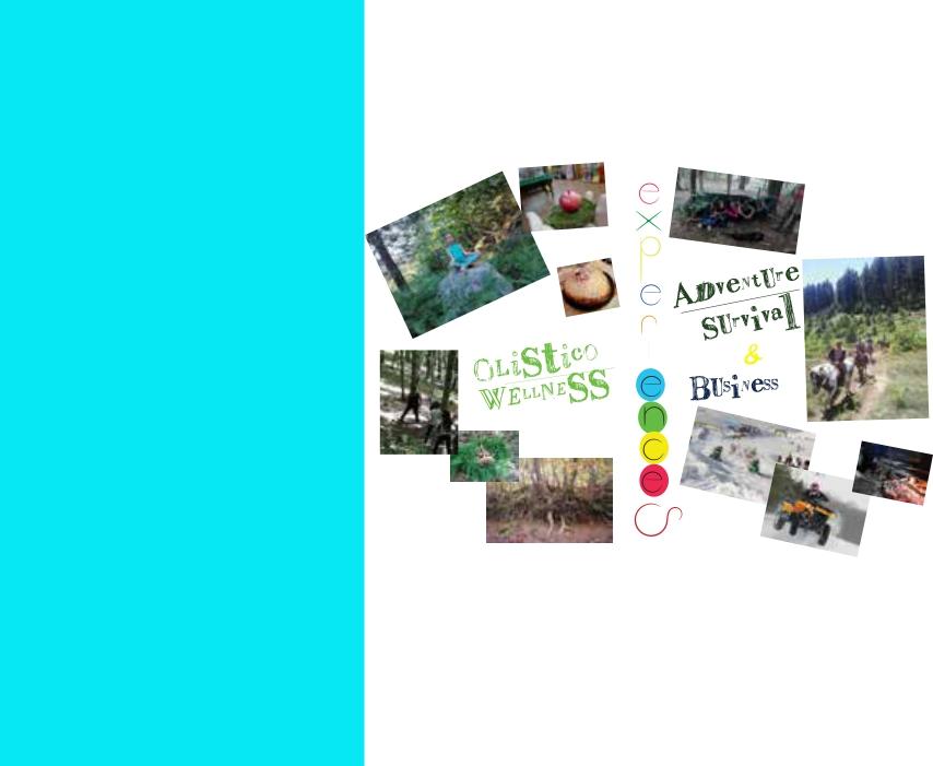 Wellness & Business Experiences Thumbnail